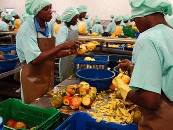 Eplucheur genomineerd voor voedselprijs #DuurzameDinsdag